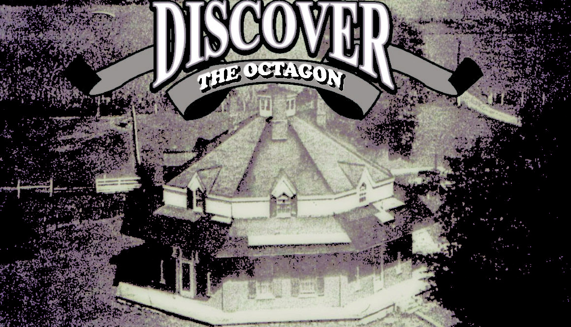 Discover the Octagon 2018